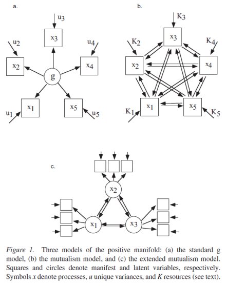 A Dynamical Model of General Intelligence - The Positive Manifold of Intelligence by Mutualism (Maas 2006) Figure 1